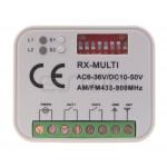 Ricevitore DS001 RX MULTI
